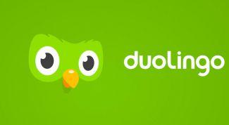 Можно ли выучить иностранный язык с помощью программы Duolingo