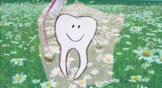 Как сохранить здоровье зубов и десен