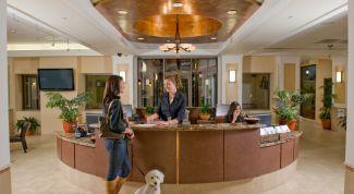 Как выбрать гостиницу для питомца