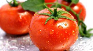 Почему нужно есть свежие помидоры