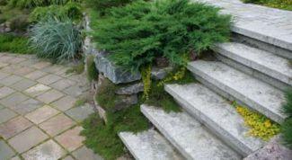 Как укладывать ступени лестницы на готовое основание