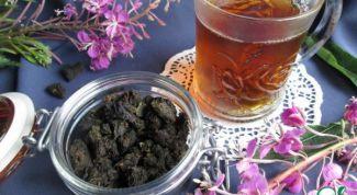 Как приготовить копорский иван-чай