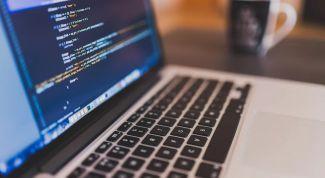 Как стать веб программистом