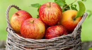 Можно ли есть яблоки при диабете 2 типа