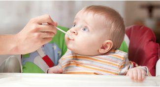 Как и когда стоит вводить прикорм малышу