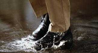 Как ухаживать за обувью в сырую погоду