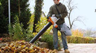 Как выбрать садовый пылесос для уборки опавшей листвы