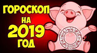 Что всем знакам зодиака ждать от 2019 года