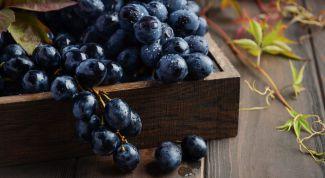 Полезен ли черный виноград
