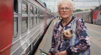 Подмосковные пенсионеры получат новую льготу на проезд по Москве