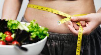 5 заповедей похудения