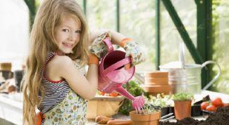Правильно ли давать деньги детям за помощь по дому