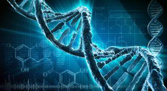 Что такое метод клеточной памяти