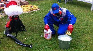 Как уничтожить комаров в квартире и на дачном участке