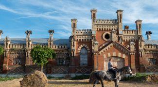 Старожиловский конный завод: описание, история, экскурсии, точный адрес