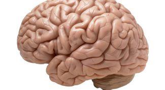 Психоорганический синдром: симптомы, стадии, лечение