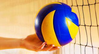 Самые красивые волейболистки в мире: список
