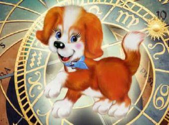 Что принесет год Собаки знакам зодиака