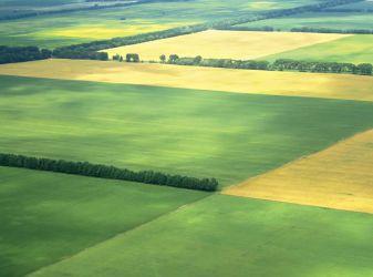 Как можно распорядиться земельным паем выгодно