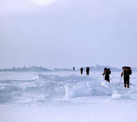 Кто первым достиг южного полюса