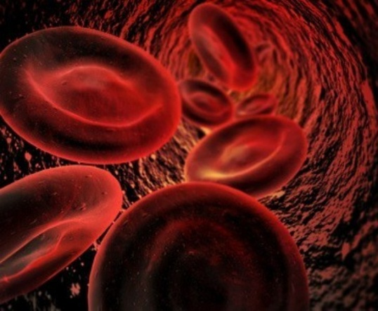 Как уменьшить уровень холестерина в крови