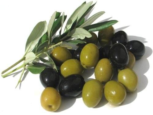 Как солить оливки