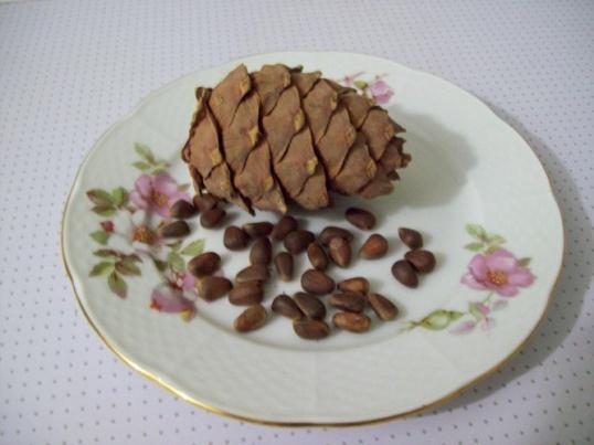 Как сделать настойку из кедровых орешков