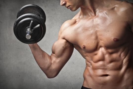 Силу можно развить, обеспечив мышцам максимальное напряжение