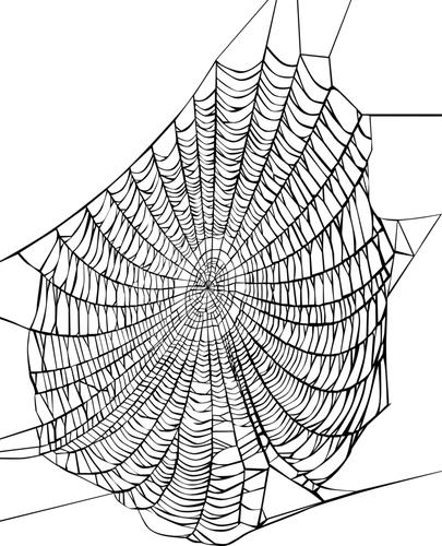 Как сделать паутину человека паука своими руками фото 753