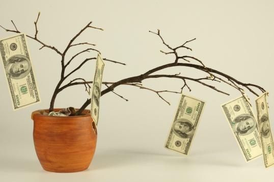 Докажите инвестору, что ваш бизнес принесет ему прибыль