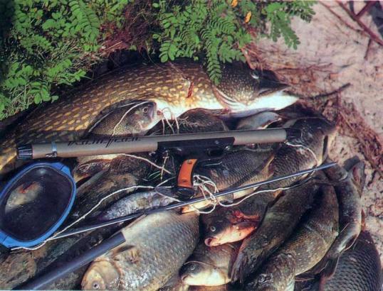 Как сделать ружье для подводной охоты