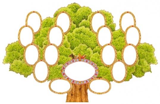 Как сделать родословное дерево