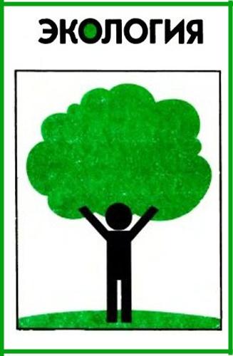 Как заполнить отчет по экологии