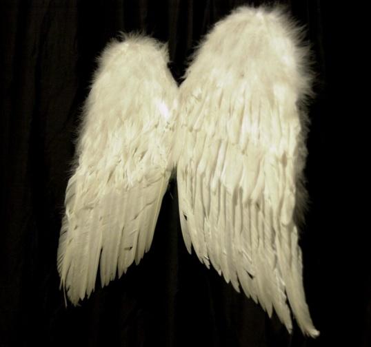 Крылья ангела сделать своими руками