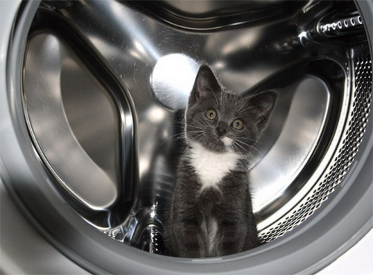 Как поменять ремень в стиральной машинке