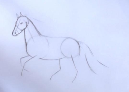Как нарисовать лошадь поэтапно Рисование