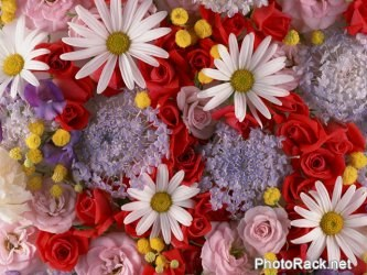 Как сделать цветы из шерстяных ниток Мастер-класс