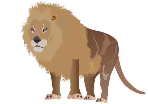 Картинка по теме - как нарисовать льва