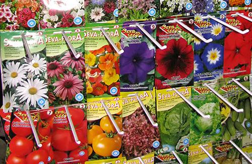 Продажа семян и рассады 879
