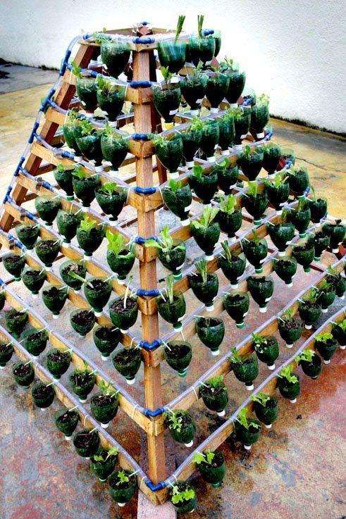 Пирамиды для клубники своими руками фото 27