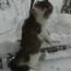 Yuliya1990