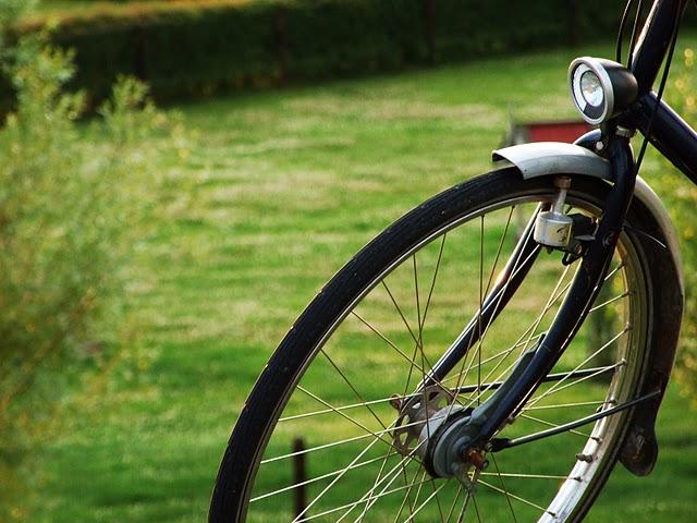 Велосипед: как выбрать популярную модель
