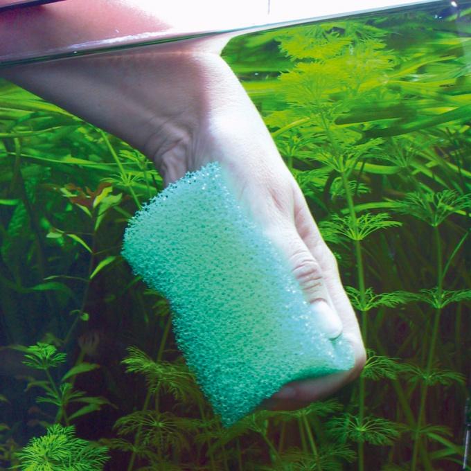 Как чистить стекла аквариума