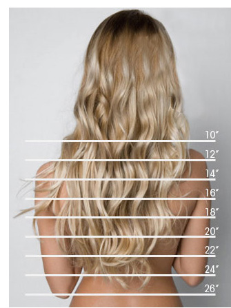 How to determine the length of the hair