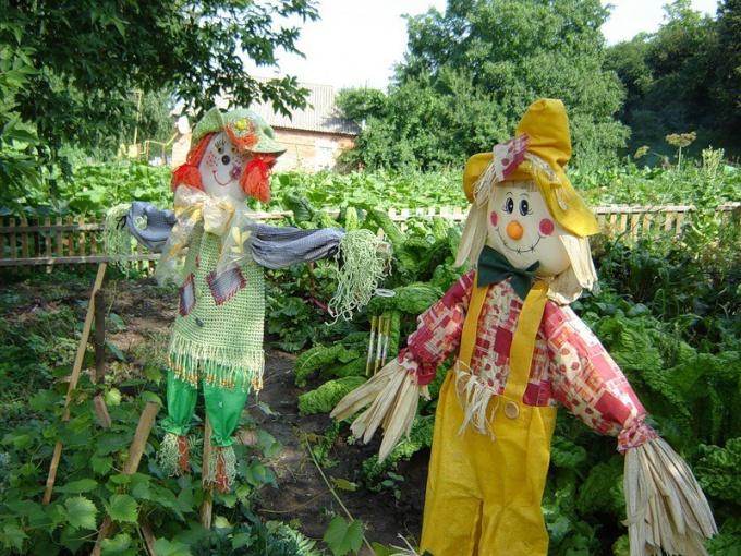Пугала огородные своими руками