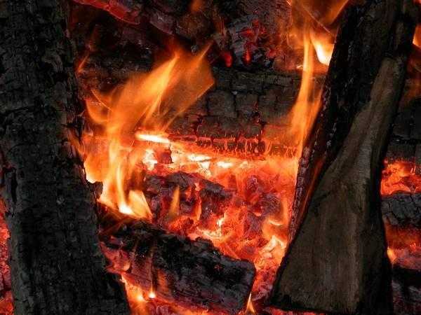 Как получить древесный уголь