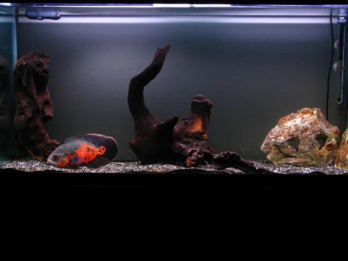 очень шумит компрессор на кислород в аквариуме