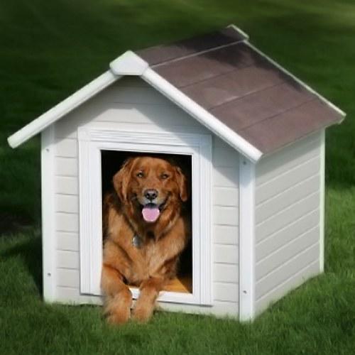Как построить домик для собаки