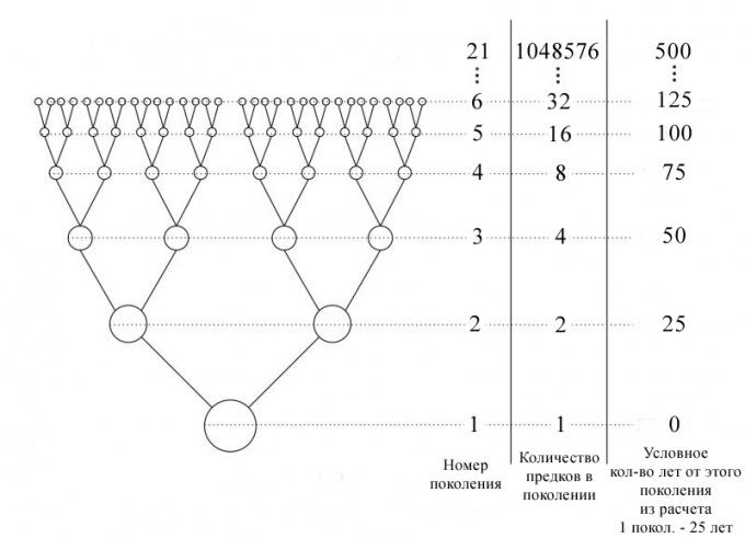 Как найти знаменатель геометрической прогрессии