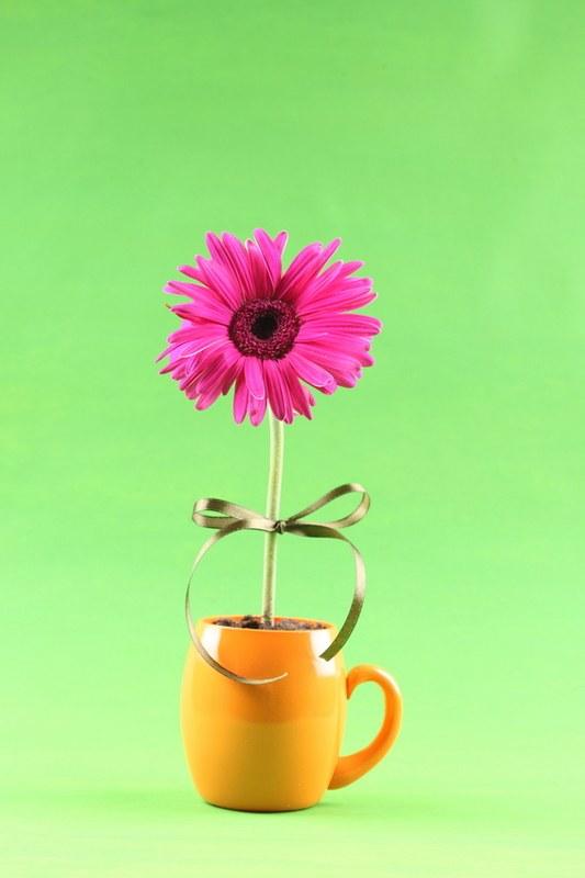 Как изобразить цветок